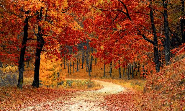 Výborné tipy na jesennú dovolenku na Slovensku